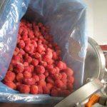 Fabricación de mermeladas - base de frutas